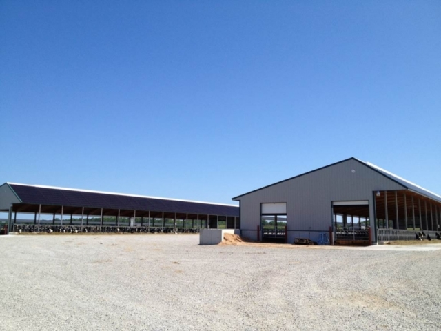 Agricultural Construction: Heifer Barns:  Finger Family Farms, Peshtigo, WI