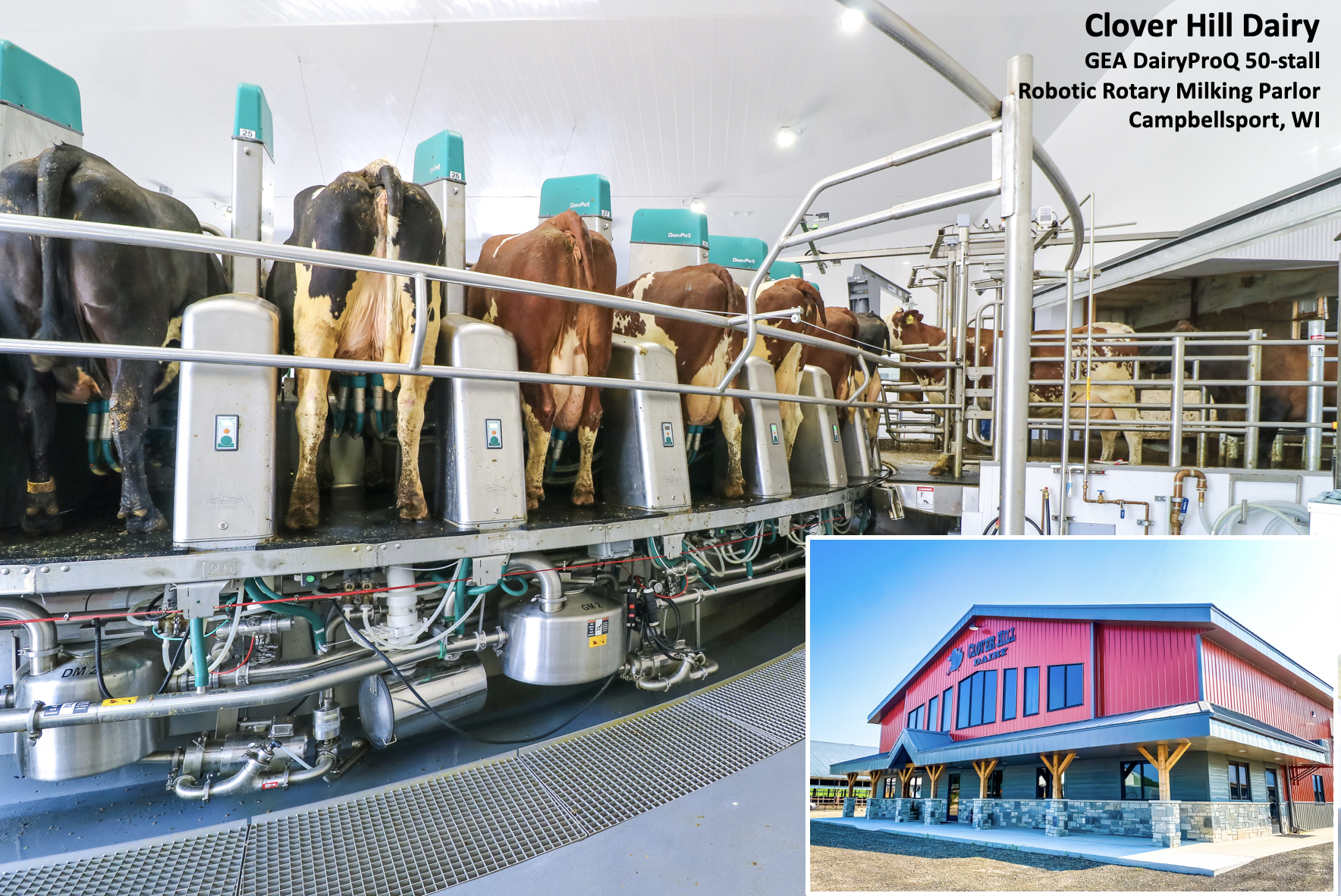 Clover Hill Dairy - Robot Rotary Milking Parlor - GEA