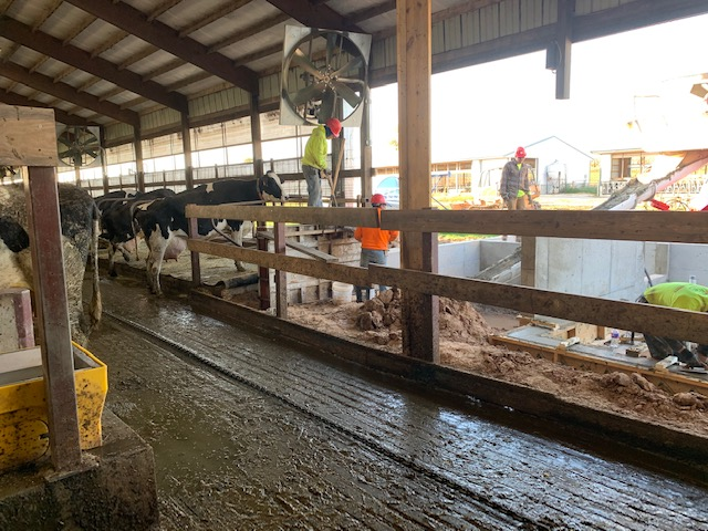 Knigge Farms - Robot Dairy Remodel